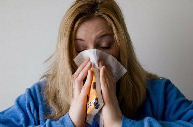 Allergi hund